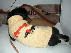 ダックスセーター