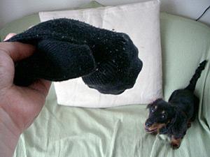1:いがぴーボールを靴下の奥に入れる